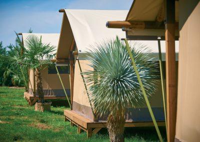 The Kenya Lodge